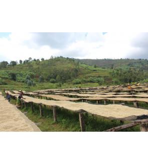 Burundi Yandora